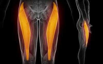 Hip flexor injury:  contusion vs strain